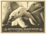 Arctic-50th-POSTER