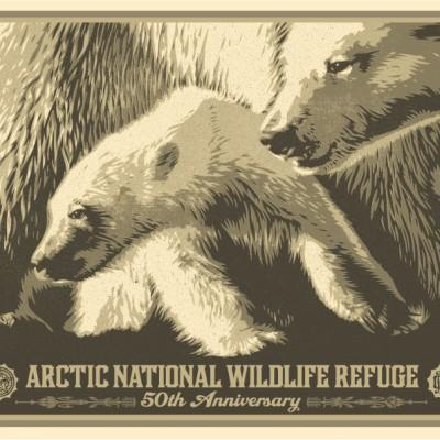 Arctic-50th-POSTER1